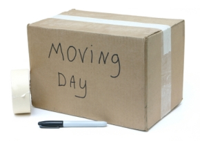 The Storyteller Chronicles: Moving; A Constant Pain!